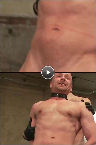 free gay pig porn video